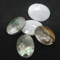 "Abalone Shell8mm x 25mm(1 x 3/4"") dia.Min. 6 Units - Product Image"