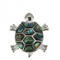 "LOGIN TO VIEW PRICINGTurtleAbalone/Paua ShellBrass Setting37mm x 46mm1 3/4 x 1 1/2"" - Product Image"