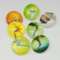 "Half Round Dome GlassDragonflies25mm (1"") dia.Min. 6 Units - Product Image"