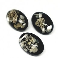 "Resin & Shell Dome Black30mm x 20mm(1 3/16"" x 3/4"") ovalMin. 6 Units - Product Image"
